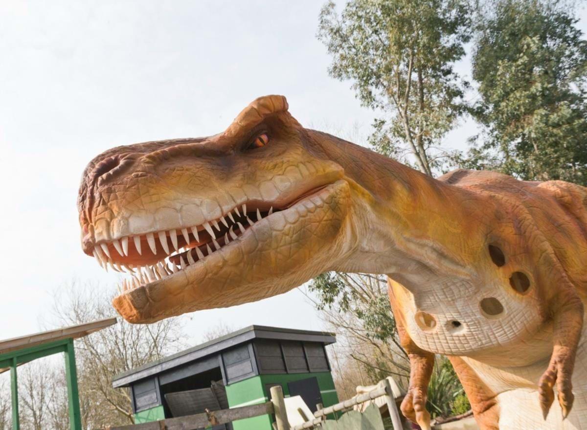 Gulliver's Dinosaur & Farm Park Top Image
