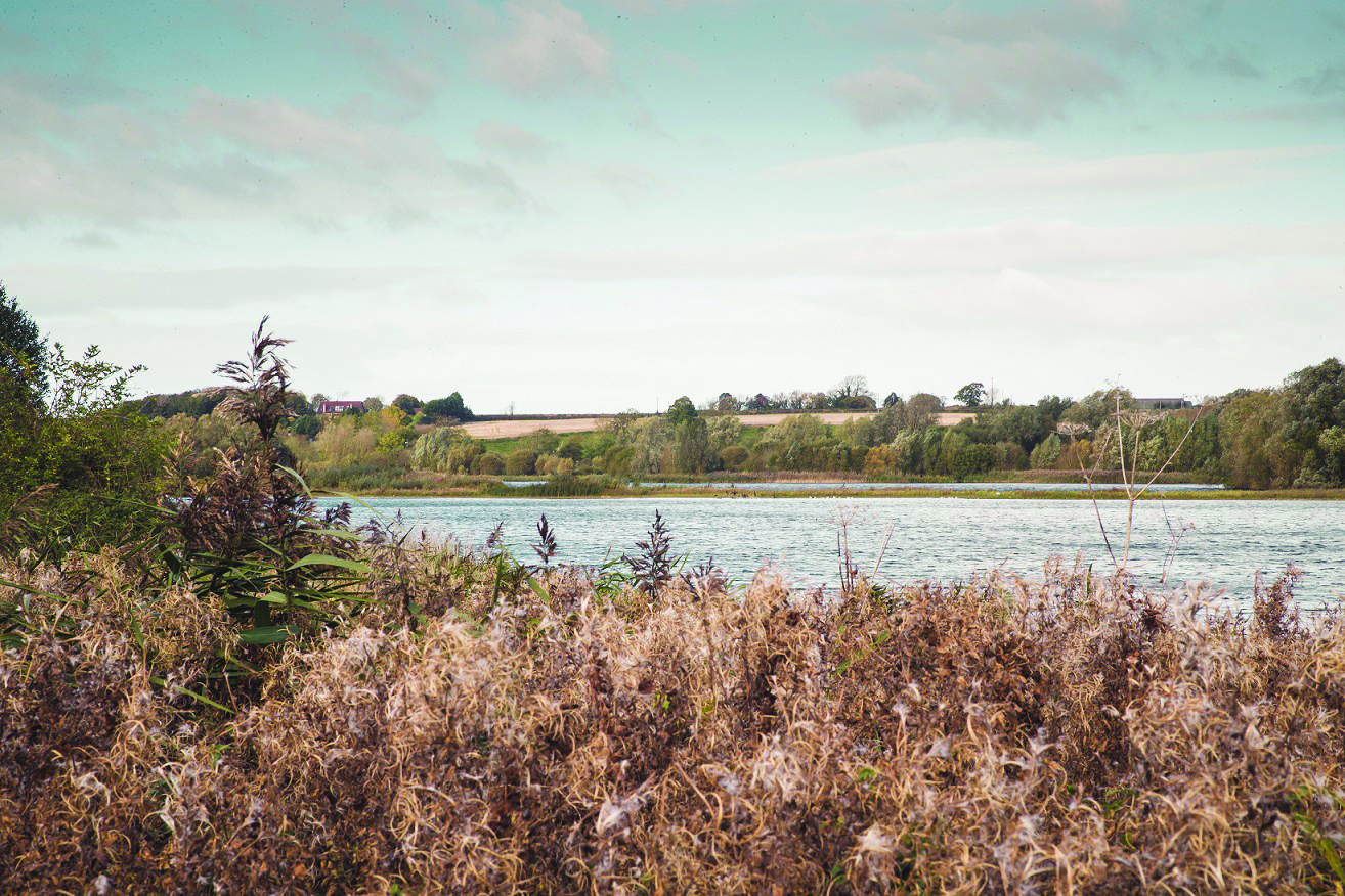 Discovery Stroll at Linford Lakes Nature Reserve Top Image