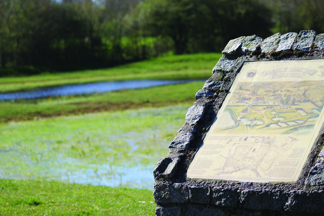 Heritage Walk: The Heritage of Ouzel Valley Park Top Image